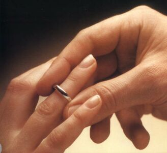 Homosexuelle Ehe der Wahl 2006
